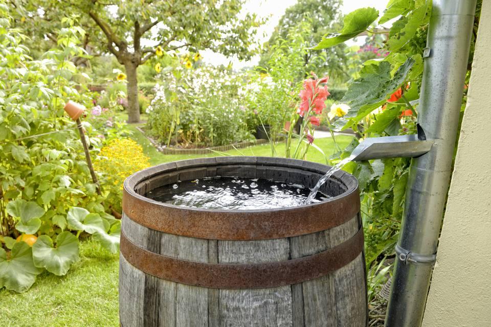 Comment fabriquer un récupérateur d'eau